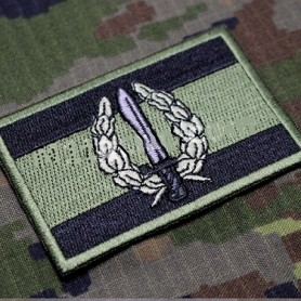 Parche bordado Bandera COE - GOE - OD Olive Dark