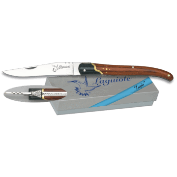 Laguiole Albainox handled knife with stamina 9.5 cm