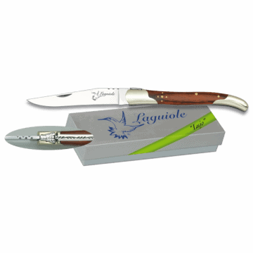 Laguiole Albainox knife with stamina handle 9 cm III
